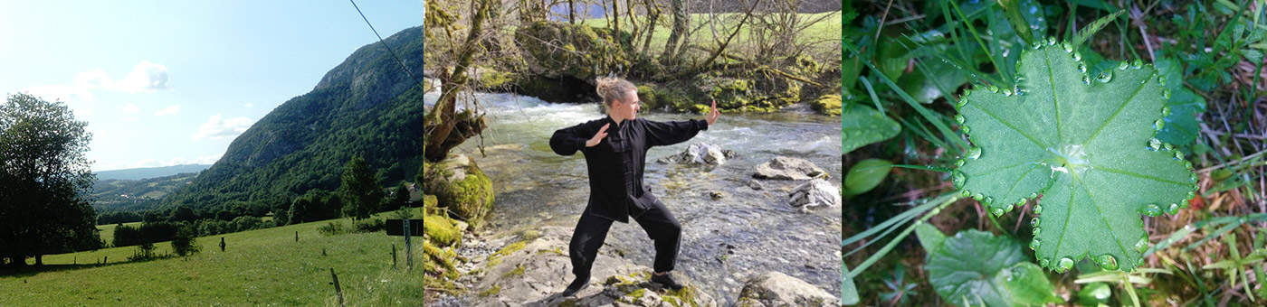 Balade initiation Qi Gong autour d'Annecy