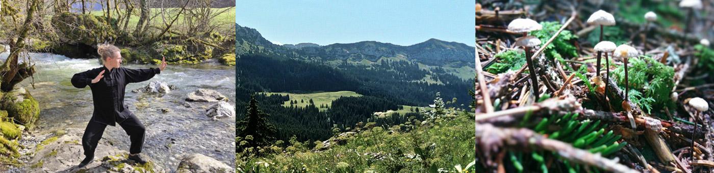 Randonnée nature et qi gong Plateau des Glières Pays Rochois